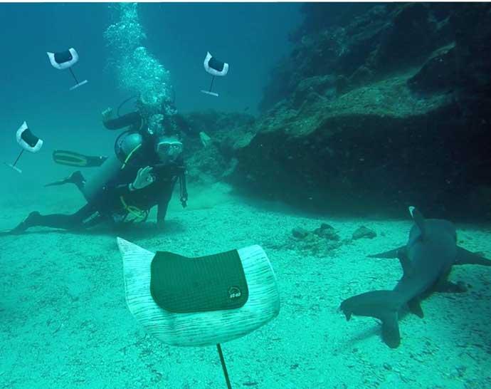 Schabracke Unterwasser