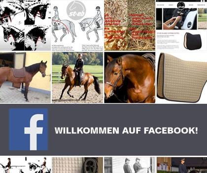 st-eb facebook